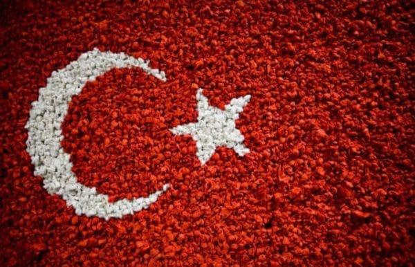 День республики (Cumhuriyet Bayramı)