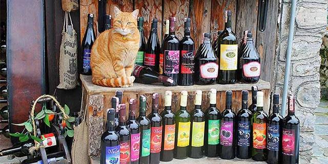 Турецкие вина